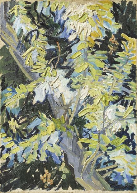 Van Gogh, Vincent: Acacia in Flower. Fine Art Print/Poster. Sizes: A4/A3/A2/A1 (004194)